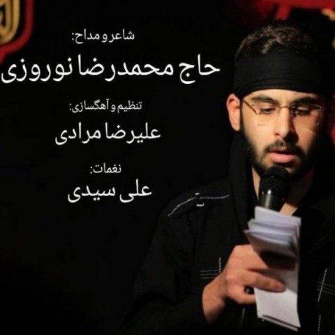 دانلود آهنگ محمدرضا نوروزی به نام عاشق هوشیار