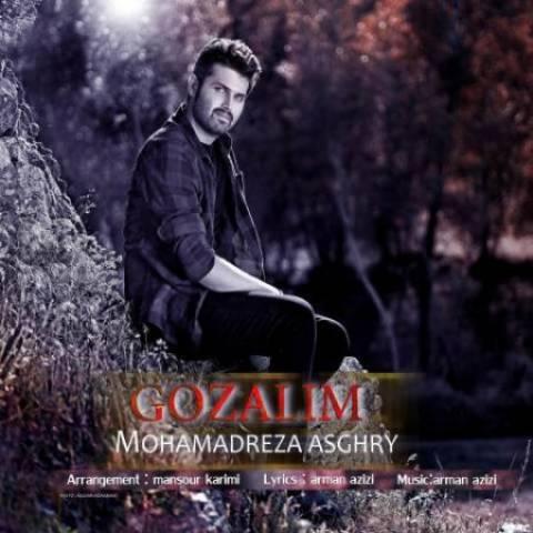 محمدرضا اصغری گوزلیم