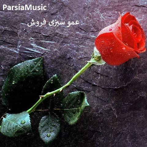 مرتضی احمدی عمو سبزی فروش