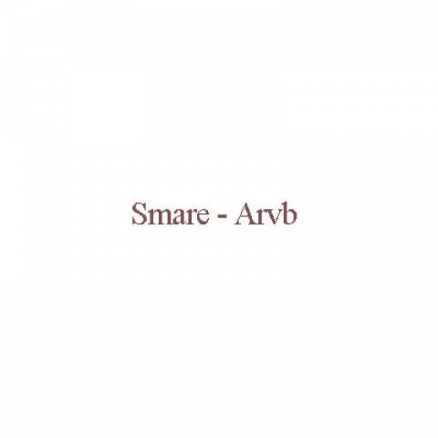 دانلود آهنگ Smare به نام Arvb