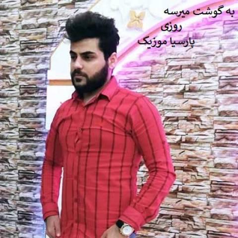 حسین عامری به گوشت میرسه