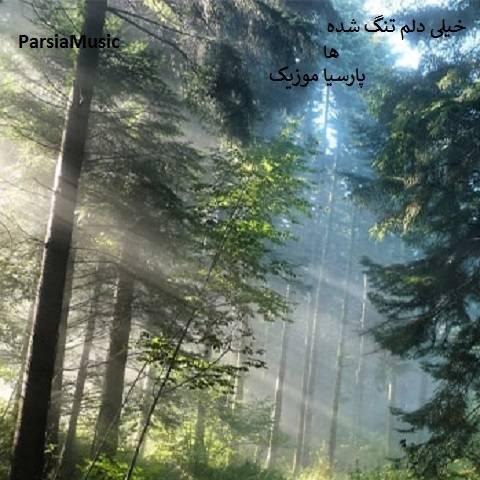 سعید حسینی خیلی دلم تنگ شده ها