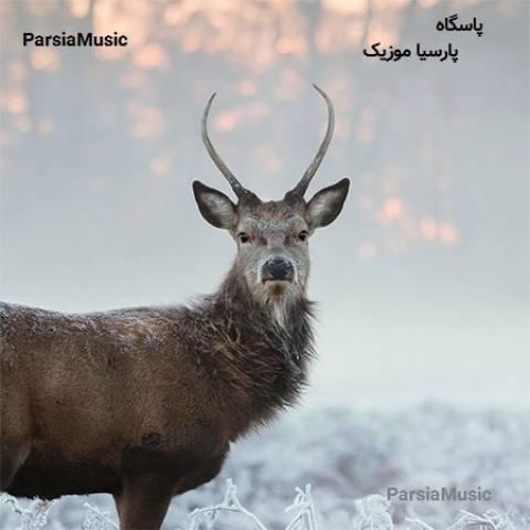 پاسگاه از محمد حاتم زاده