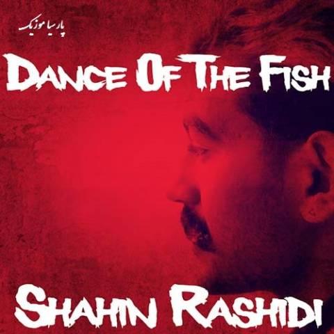 رقص ماهی ها از شاهین رشیدی