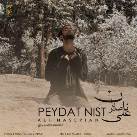 پیدات نیست از علی ناصریان